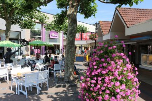 Hotels in Lisse