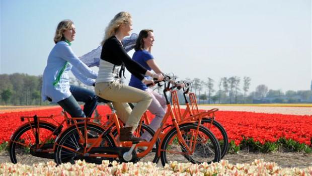Huur een fiets bij Keukenhof en geniet van de bloemenvelden