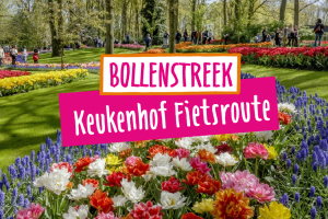 Keukenhof fietsroute langs de bloemenvelden 34 km