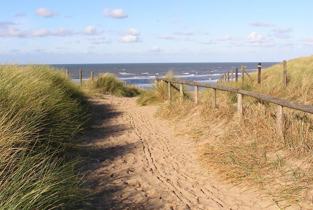 Kust en duinen Noordwijk