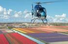 Starten Sie Hubschrauberflüge am Samstag, 31. März