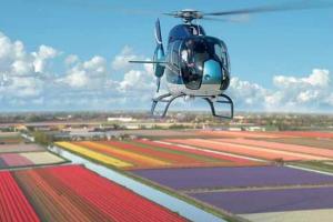 Helikoptervlucht boven de bloemenvelden bij Keukenhof in april 2019