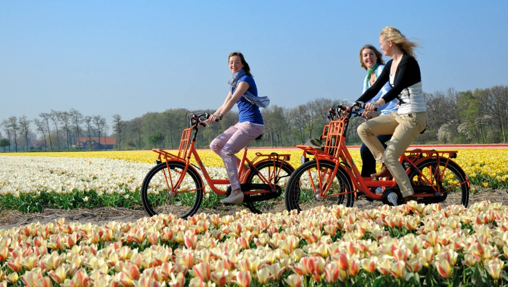 bicycles Keukenhof