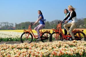 Cycling Keukenhof