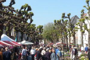 Donderdag wekelijkse markt in Noordwijk