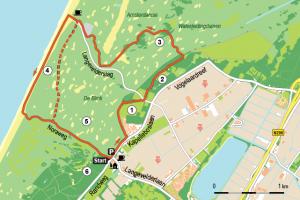 Wandelen op de Zandhagedisroute in Noordwijk