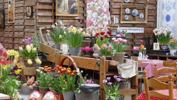Bloembollenkwekerij De Tulperij in Voorhout