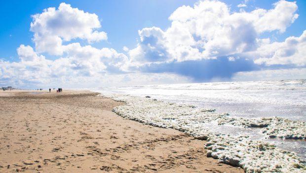 Strand bollenstreek