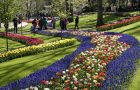 How do you easily travel to Keukenhof?
