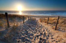 Nationaal Park Hollandse Duinen