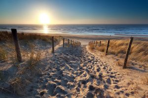 Dutch Beach & Dunes