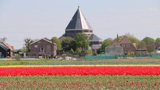 Bloei update en verwachting bloemenvelden – 3 mei 2018
