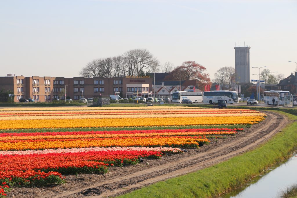 Hotel near tulip fields Holland