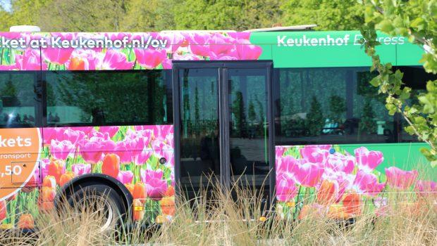 Keukenhof Express Bus
