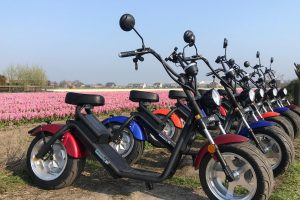 Electric scooter Bollenstreek