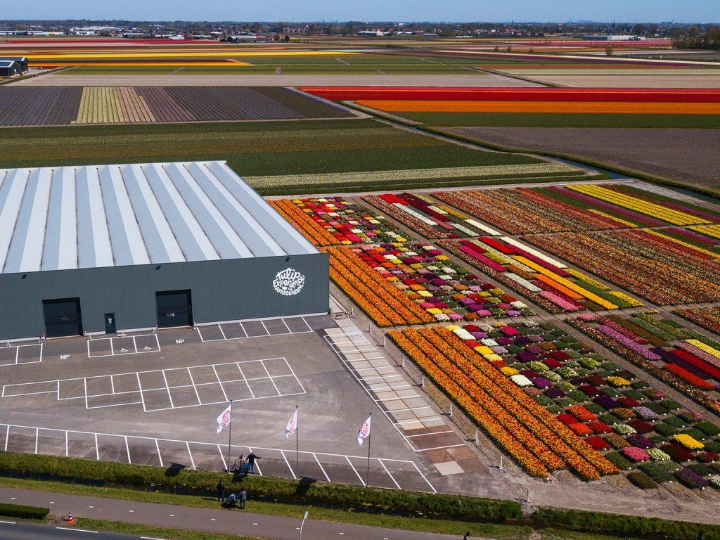Tulip Experience Amsterdam Noordwijkerhout