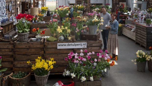 De Tulperij in Voorhout